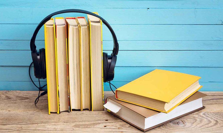 Озвучивание текста: создание аудиокниг в программе ABoo