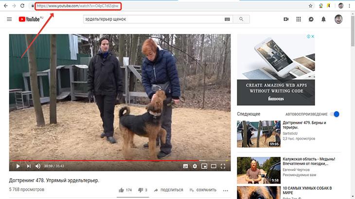 Выбранное видео на ютуб