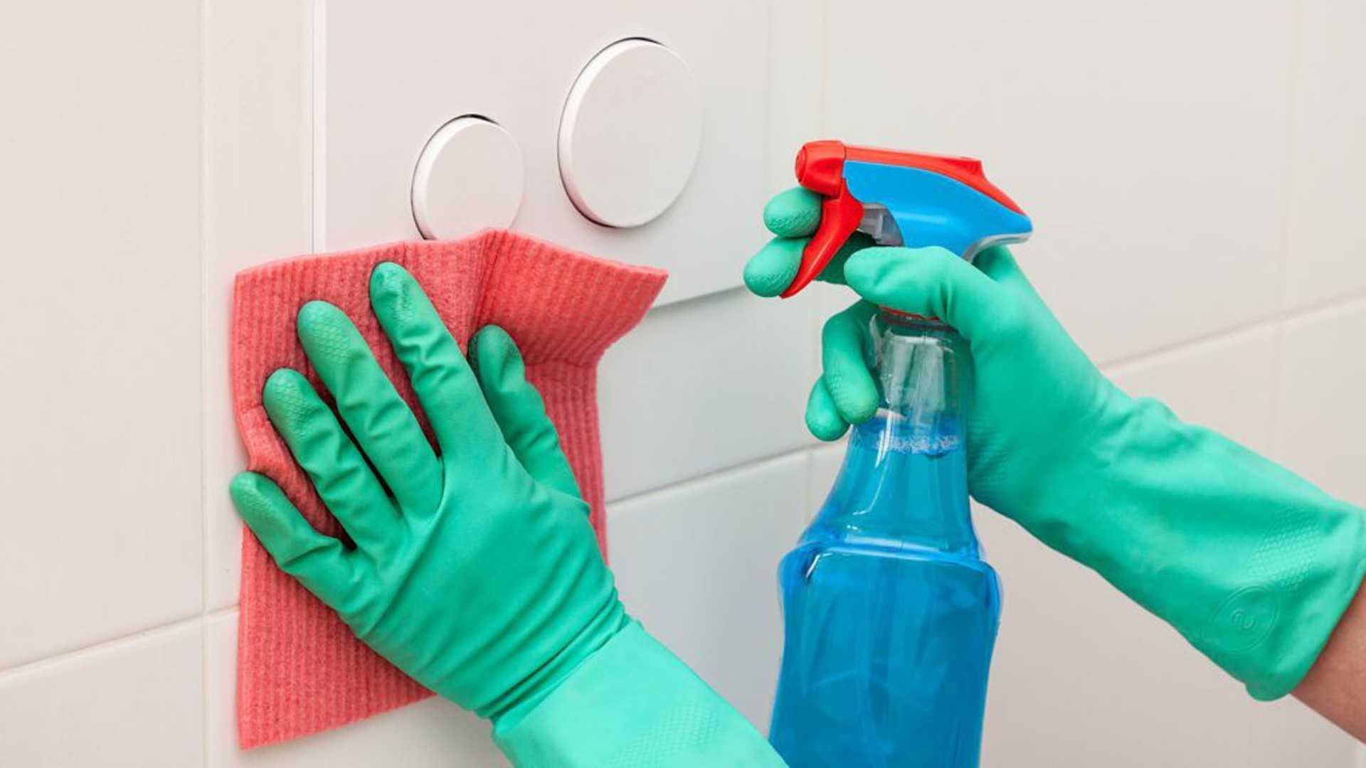 Как обезопасить свое жилье от вирусов, бактерий и паразитов