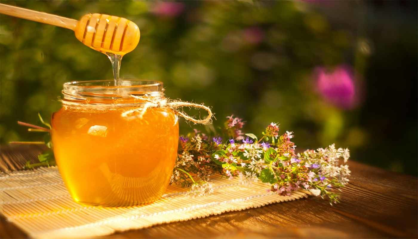 Пчелиный мед, чем полезен. Как определить качественный мед. Сорта меда и их целебные свойства