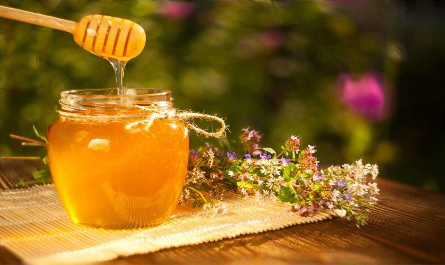 Пчелиный мед, чем полезен. Как определить натуральный мед. Сорта меда и их лечебные свойства