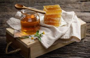 Сорта меда и их целебные свойства