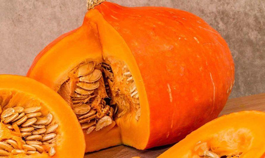 Лечимся тыквой: какие полезные свойства тыквы используются в официальной и народной медицине