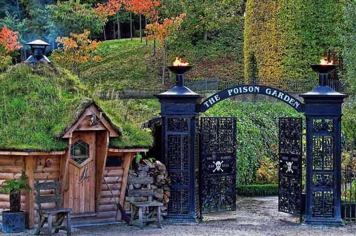 Ядовитый сад Альнвик